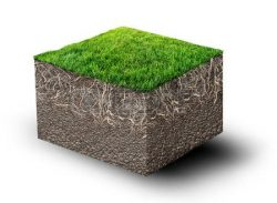 Turf in 3 dimensions